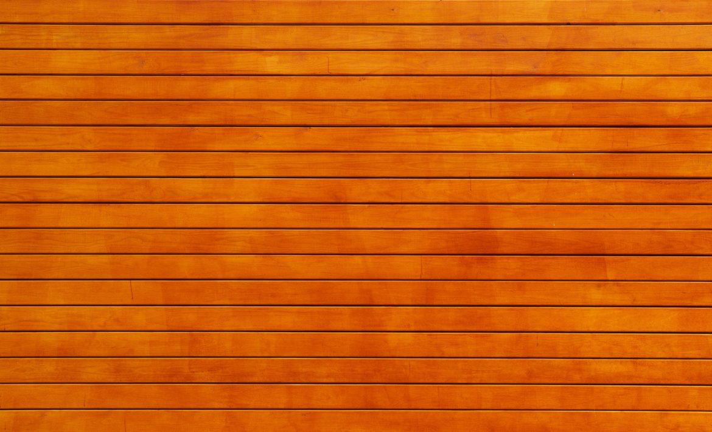 Picture of orange background.